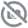 RAPID TONIC 40 COMPIMES tonus-Diet Horizon